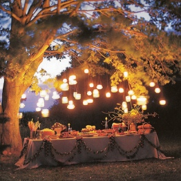 dinner lights 1